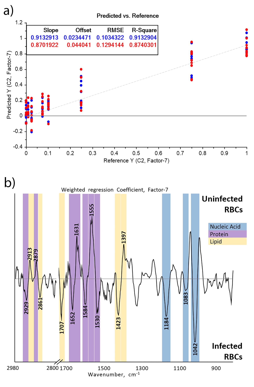 Detection and Quantification of Plasmodium falciparum in Aqueous Red