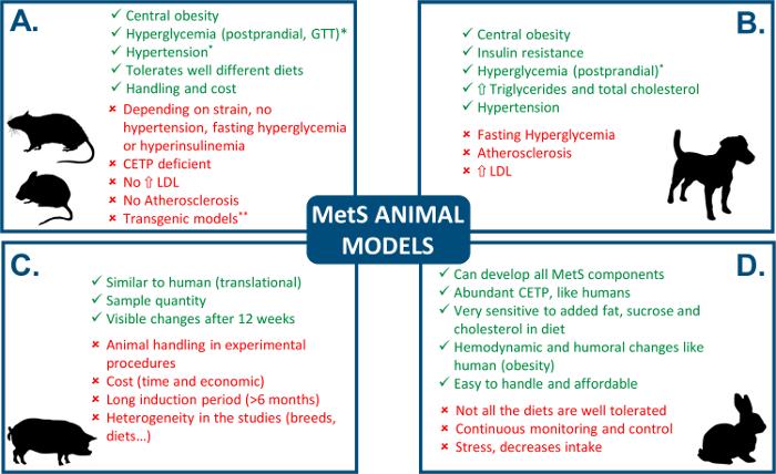 dieta metabolica per cani uk