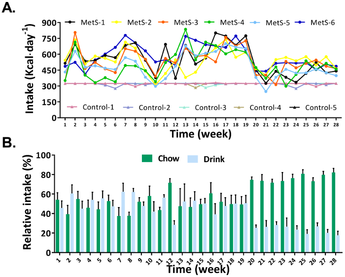An Experimental Model of Diet-Induced Metabolic Syndrome in