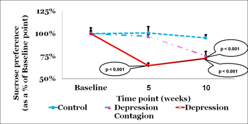 A New Method for Inducing a Depression-Like Behavior in Rats