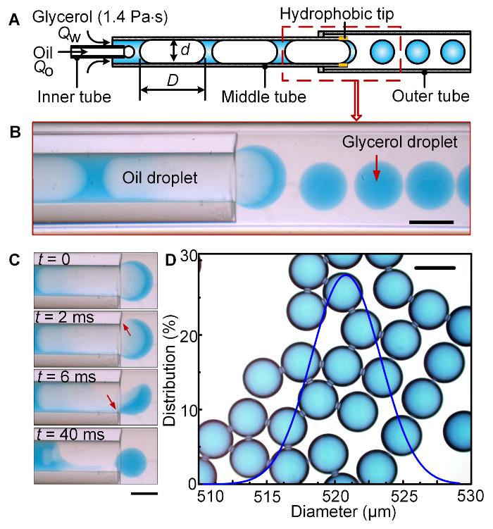 Fabricating High-viscosity Droplets using Microfluidic
