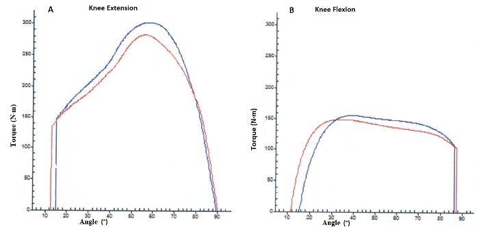 Muscle Imbalances: Testing and Training Functional Eccentric