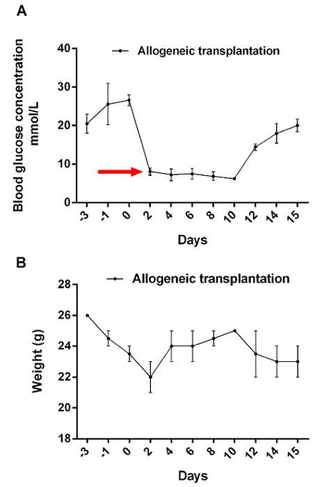 diabetes tipo ii inducida por la dieta en peso de ratones c57bl / 6