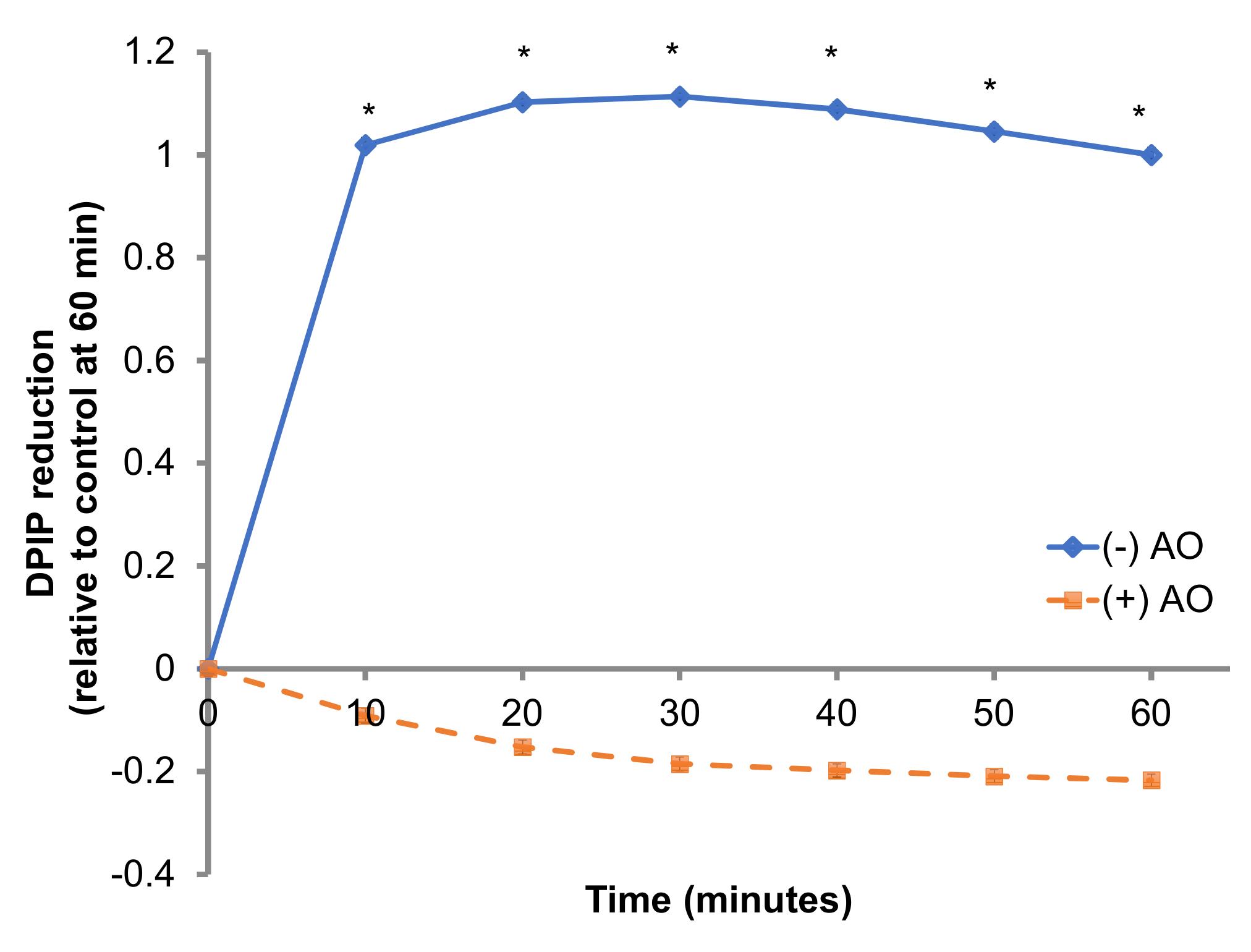 Measuring Trans-Plasma Membrane Electron Transport by C2C12 Myotubes