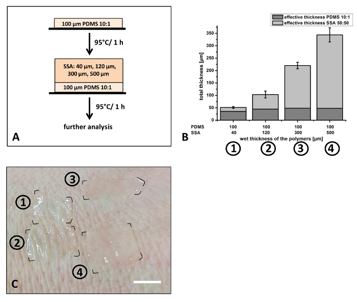 Thin Film Composite Silicon Elastomers For Cell Culture And Skin