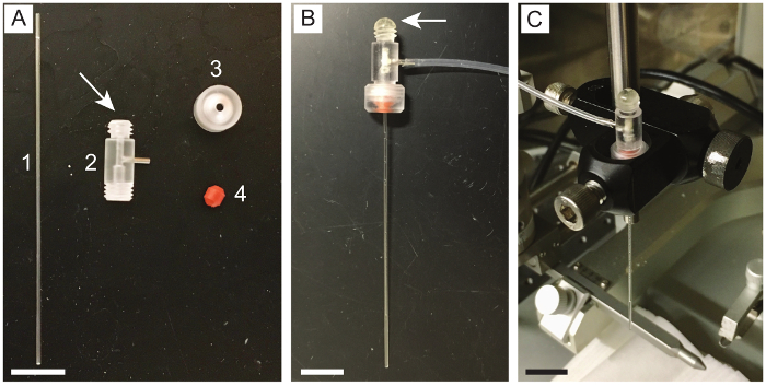 Syringe-injectable Mesh Electronics for Stable Chronic