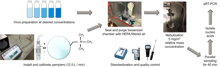 Detection of Viruses from Bioaerosols Using Anion Exchange