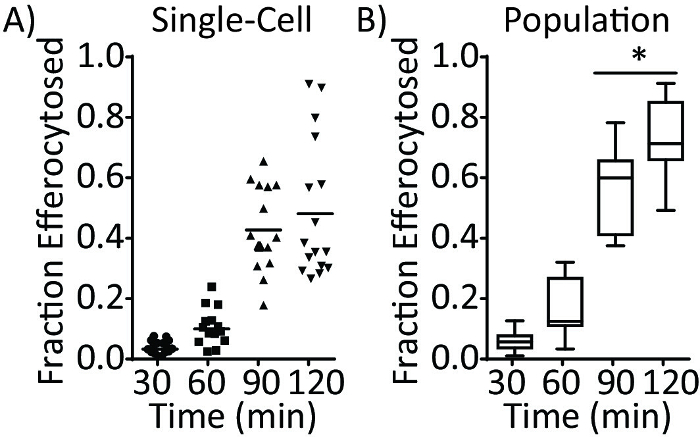 Quantification Of Efferocytosis By Single Cell Fluorescence