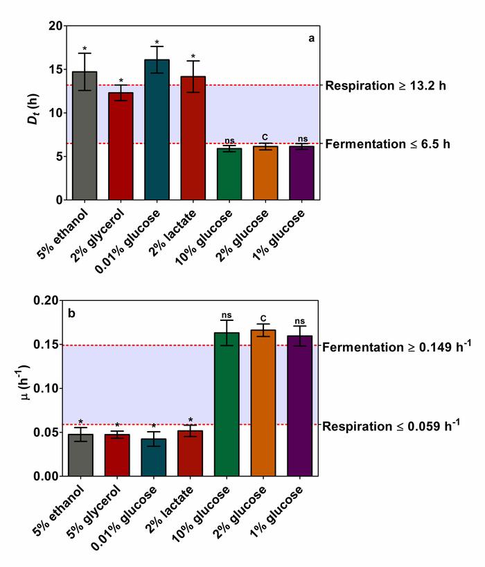 Carbon dating matematisk modellering