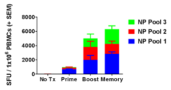 Optimized Interferon-gamma ELISpot Assay to Measure T Cell Responses