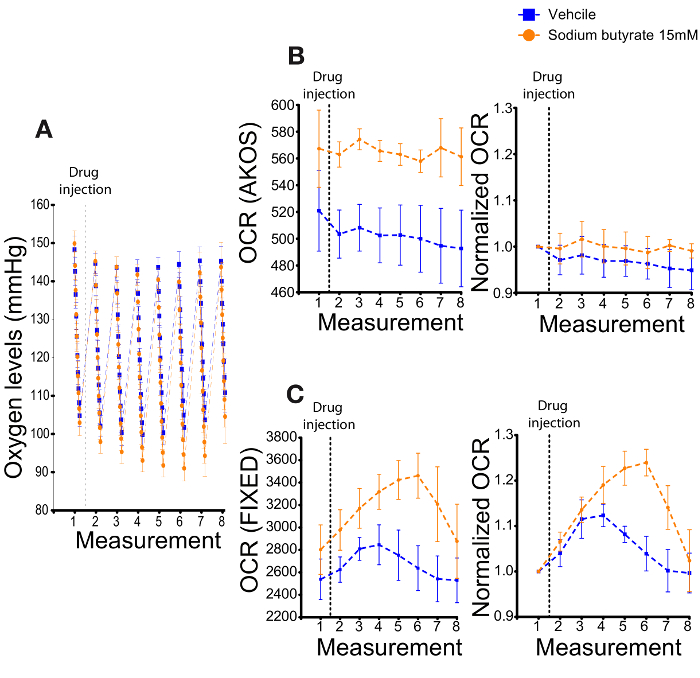 Measuring and Interpreting Oxygen Consumption Rates in Whole