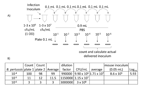 Evaluation of Host-Pathogen Responses and Vaccine Efficacy