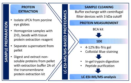 Sample Preparation For Mass Spectrometry Based Proteomics Analysis