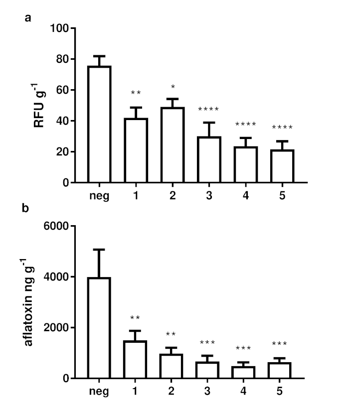 Inhibition of Aspergillus flavus Growth and Aflatoxin