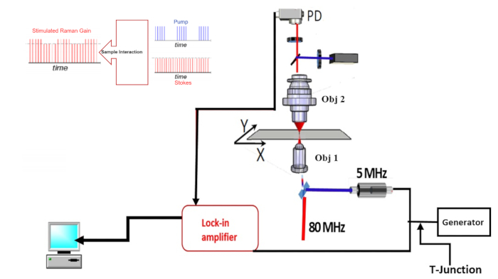 Implementation of a Nonlinear Microscope Based on Stimulated
