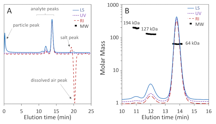 Characterization of Proteins by Size-Exclusion Chromatography