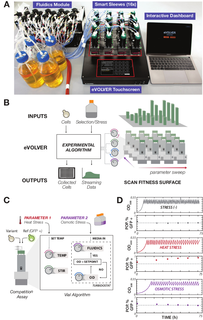 Designing Automated, High-throughput, Continuous Cell Growth