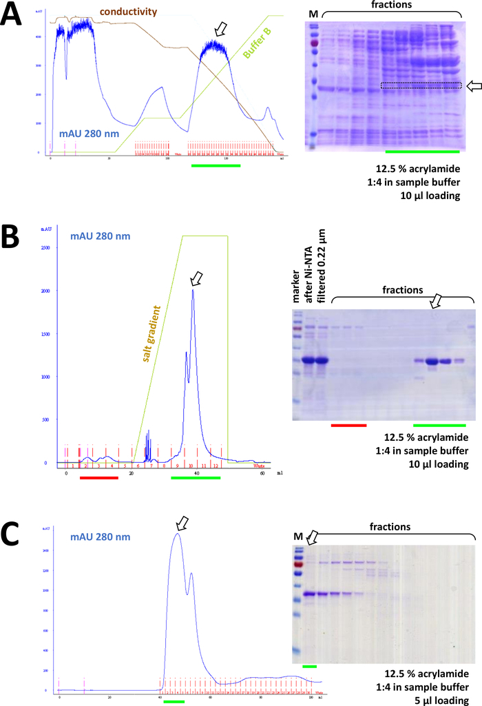 cristalografia de raio x protein as para bajar de peso