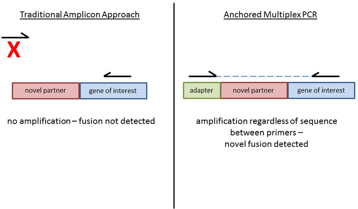 Oncogenic Gene Fusion Detection Using Anchored Multiplex