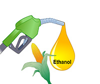 Biofuels: Producing Ethanol from Cellulosic Material thumbnail