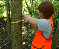 Tree Survey: Point-Centered Quarter Sampling Method thumbnail