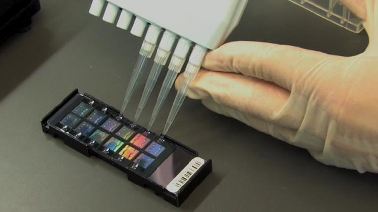 SNP Genotyping thumbnail