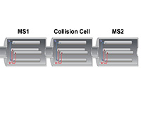 Tandem Mass Spectrometry thumbnail