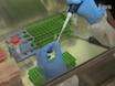 स्तनधारी कोशिकाओं में डीएनए डबल कतरा तोड़ मरम्मत (DSB) के विश्लेषण thumbnail