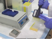 An Assay for Measuring the Activity of <em>Escherichia coli</em> Inducible Lysine Decarboxyase thumbnail