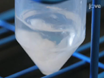 Formulation de nanoparticules polymériques dibloc par la technique nanoprécipitation thumbnail