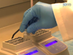 Imaging Neuronal Responses in Slice Preparations of Vomeronasal Organ Expressing a Genetically Encoded Calcium Sensor thumbnail