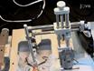 Стереотаксической хирургии эксайтотоксичного Поражение конкретных областей мозга в взрослых крыс thumbnail
