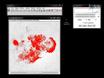 단일 및 다세포 상황에서 Invadopodia로 인한 세포 외 기질 Proteolysis의 양적 측정 thumbnail