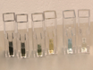 En<em&gt; In vivo</em&gt; Assay til Test Blood Vessel Permeabilitet thumbnail
