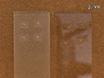 में मेटाबोलाइट्स के जांच के लिए MALDI-बड़े पैमाने पर spectrometric इमेजिंग<em&gt; Medicago truncatula</em&gt; जड़ पिंड thumbnail