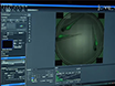 Semi-automated Imaging of Tissue-specific Fluorescence in Zebrafish Embryos thumbnail