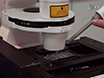 Assessing the Secretory Capacity of Pancreatic Acinar Cells thumbnail