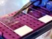 Veloce fluorescente<em&gt; In Situ</em&gt; Protocollo di ibridazione per Xist RNA combinata con immunofluorescenza di istone modifica in cromosoma X inattivazione thumbnail