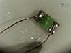 Optogenetic Stimulation of the Auditory Nerve thumbnail