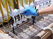 水化学と海洋微生物学へのフィールドガイド - 海における幽玄選手の解明 thumbnail