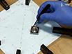 Un Positron Emission Tomography Basic System Construit pour localiser une source radioactive dans un espace bidimensionnel thumbnail