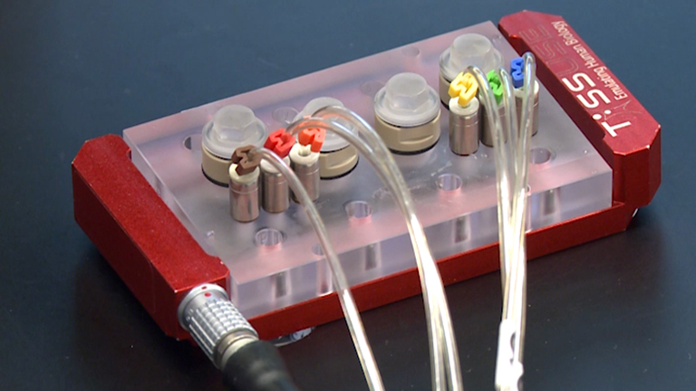 The Multi-organ Chip - A Microfluidic Platform for Long-term Multi-tissue Coculture