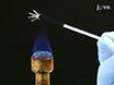 본래 Neuroepithelium에서 마우스 강한 감각 뉴런의 천공 패치 클램프 녹음 : 확인 된 부 취제 수용체를 발현 뉴런의 기능 분석 thumbnail