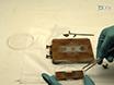 توصيف النانوية الحجم التوزيع باستخدام مطيافية رامان مع متعددة الجسيمات الطاقة الصوتية الحبس نموذج thumbnail
