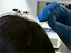 Generation Integrations- fria Human inducerade pluripotenta stamceller Använda Hair-härledda Keratinocyter thumbnail
