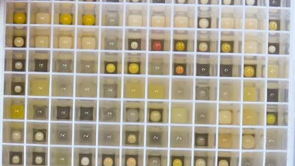 الآلي وحدات إنتاجية عالية Exopolysaccharide فحص منصة مقرونا حساسة للغاية تحليل الكربوهيدرات بصمات الأصابع thumbnail