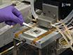 איכות heterojunction משופר ב Cu<sub&gt; 2</sub&gt; O מבוסס תאים סולריים באמצעות אופטימיזציה של לחץ האטמוספרה אטומי שכבת מרחבים שהופקדה<br /&gt; Zn<sub&gt; 1-x</sub&gt; Mg<sub&gt; x</sub&gt; O thumbnail