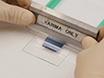 Laser-induced Forward Transfer of Ag Nanopaste thumbnail