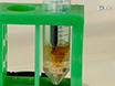 Synthesis of Protein Bioconjugates <em>via</em> Cysteine-maleimide Chemistry thumbnail