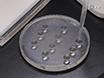 <em>In Situ</em> Labeling of Mitochondrial DNA Replication in <em>Drosophila</em> Adult Ovaries by EdU Staining thumbnail